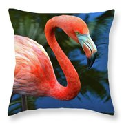 Flamingo Wading In Pond Throw Pillow