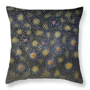 Flank Of A Brook Trout Salvelinus Throw Pillow