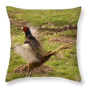 Flapping The Wings Throw Pillow