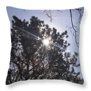 Flashlight Canope Throw Pillow