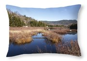 Flat Mountain Ponds - Sandwich Wilderness White Mountains Nh Throw Pillow