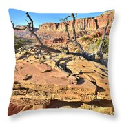 Flat Rock Along Scenic Drive Throw Pillow