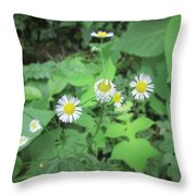Flawed Perfection Throw Pillow