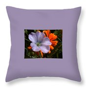 Flax And Aster Throw Pillow