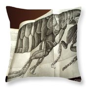 Flea From Robert Hookes Micrographia Throw Pillow