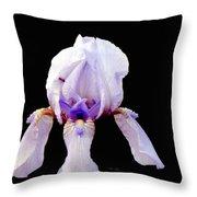 Fleur De Lis Throw Pillow
