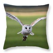 Flight Of The Barn Owl Throw Pillow