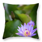 Flight Of The Bee  II Throw Pillow by Jon Glaser