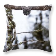 Flight Of The Great Gray Throw Pillow