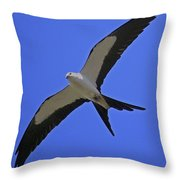 Flight Of The Kite Throw Pillow