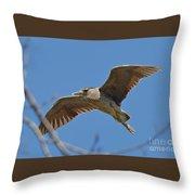 Flight Of The Night Heron Throw Pillow