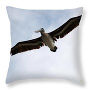 Flight Of The Pelican Throw Pillow