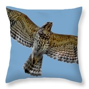 Flight Of The Red Shouldered Hawk Throw Pillow