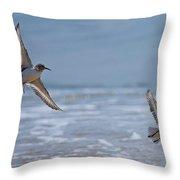 Flight Of The Sanderlings Throw Pillow