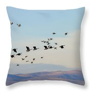 Flight Of The Waterfowl Throw Pillow