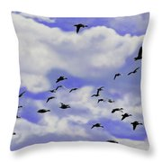 Flight Over Lake Throw Pillow