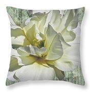 Flirty Beauty Throw Pillow