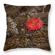 Floating Downstream Throw Pillow