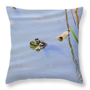 Floating Frog Throw Pillow
