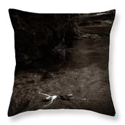 Floating In Light Throw Pillow by Scott Sawyer