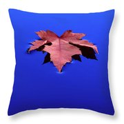 Floating Leaf 1 - Maple Throw Pillow