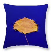 Floating Leaf 3 - Birch Throw Pillow