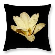 Floating Magnolia Flower Throw Pillow