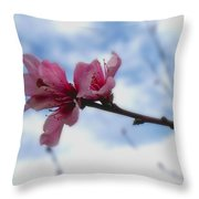 Floating On Air Throw Pillow