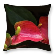 Floating On Moonlight Throw Pillow