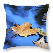 Floating On The Reflected Sky Throw Pillow