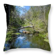 Floating The Iche Throw Pillow