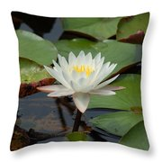 Floating Water Lilly Throw Pillow