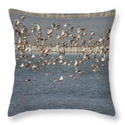 Flock Of Birds In Flight  Throw Pillow