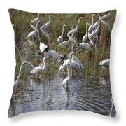 Flock Of Different Types Of Wading Birds Throw Pillow