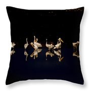 Flock Of Pelicans At Night Throw Pillow