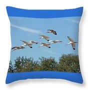 Flock Of White Ibises Throw Pillow