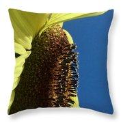 Flower Face 811 Throw Pillow