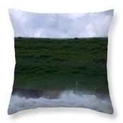 Flood Gates Open Throw Pillow