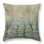 Flood In Giverny Throw Pillow