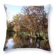 Flood Plain Throw Pillow