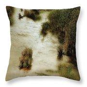 Flood Tide In The Salt Marsh Throw Pillow