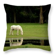 Flooded Field In May Throw Pillow