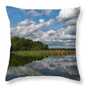 Flooded Low Country Rice Field Throw Pillow