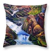 Floodstage Throw Pillow