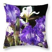 Flora Bota Irises Purple White Iris Flowers 29 Iris Art Prints Baslee Troutman Throw Pillow