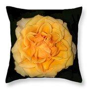 Flora Fantasy 5.14.17 Florainterpretation Throw Pillow