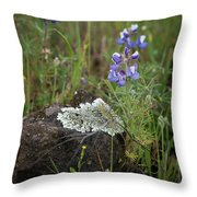 Flora On The Plateau Throw Pillow