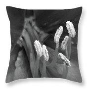 Flora Stigma Bw Throw Pillow