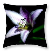 Floral 7-24-09 Throw Pillow