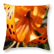 Floral Abstracts Art Prints Summer Tiger Lily Baslee Troutman  Throw Pillow